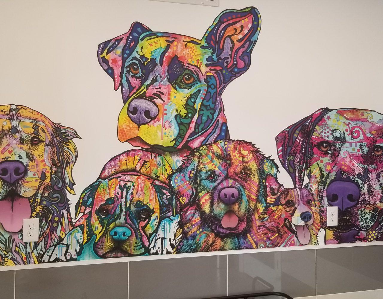 Arbors at Carrollwood Dog Wash - Wall Design