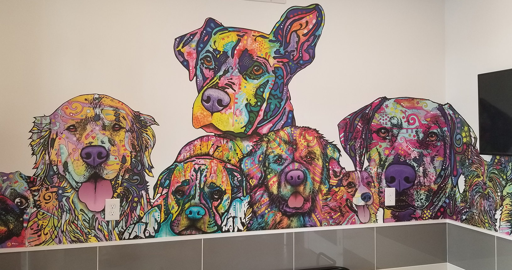 Arbors at Carrollwood pet area wall painting